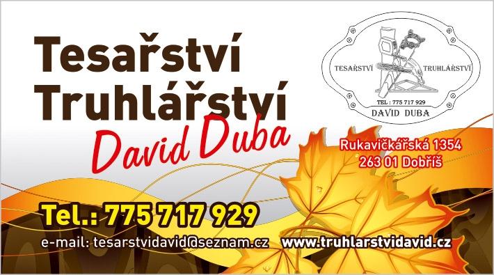 Duba David - Truhlářství - vizitky